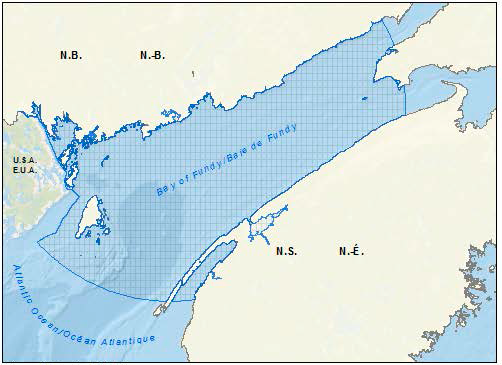 Map of the Bay of Fundy pilot area